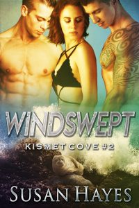 Cover of windswept. 2 men. 1 woman. 1 seal