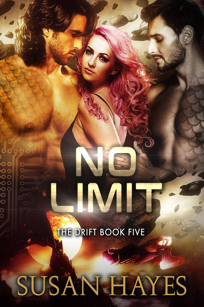 Book Cover: No Limit